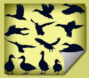 duck_patterns_for_plasma_cutting_dxf_files_plasmaspider